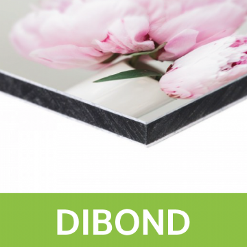 Single Sided Dibond Board